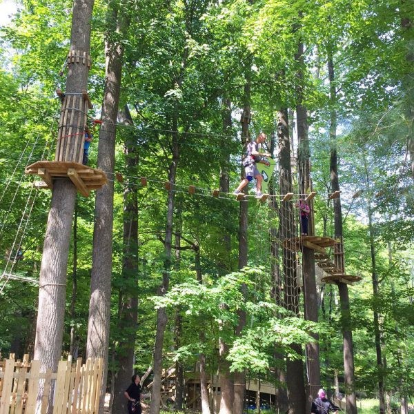 Go Ape in the Treetops of Strongsville