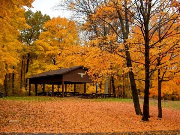 Perfect pics: Tips for capturing fall in Ohio