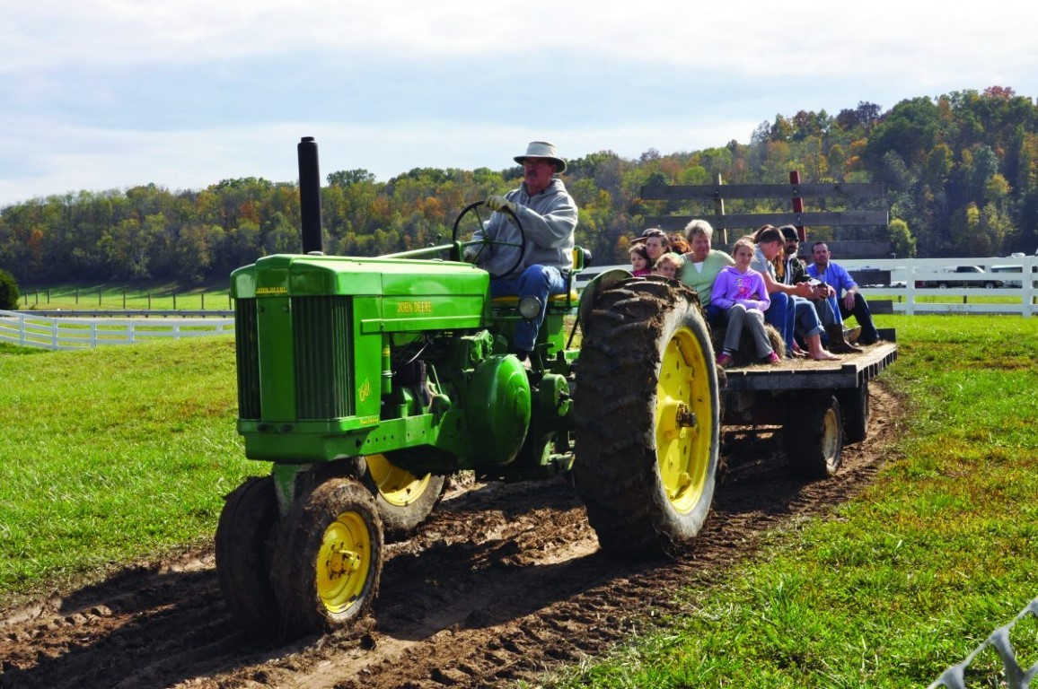5 Can't Miss Fall Festivals in Ohio