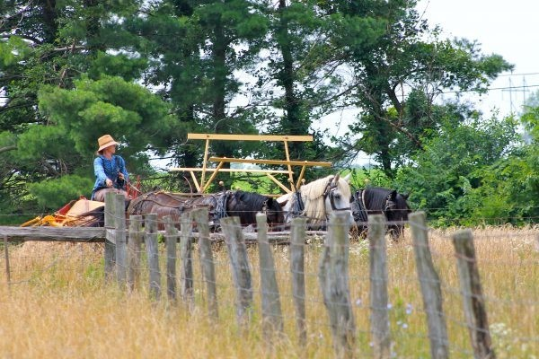 Experience history at Slate Run Living Historical Farm