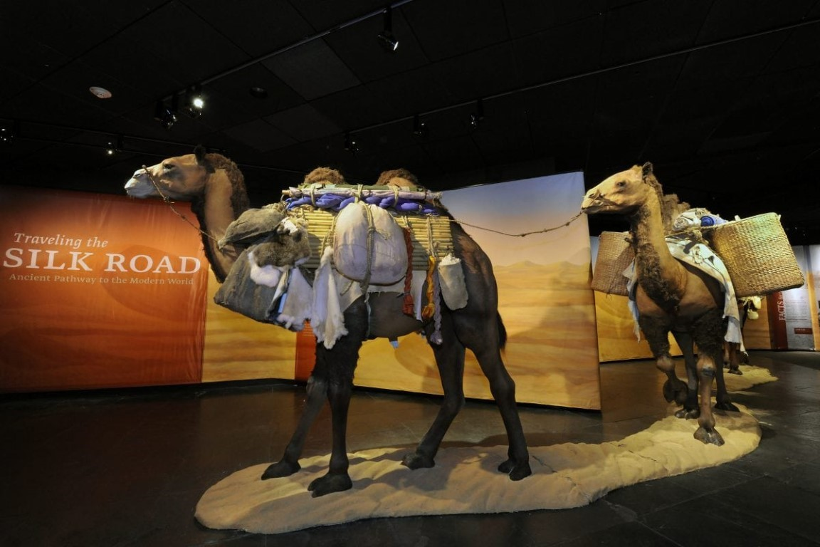 Find History in Ohio at COSI's Traveling The Silk Road Exhibit