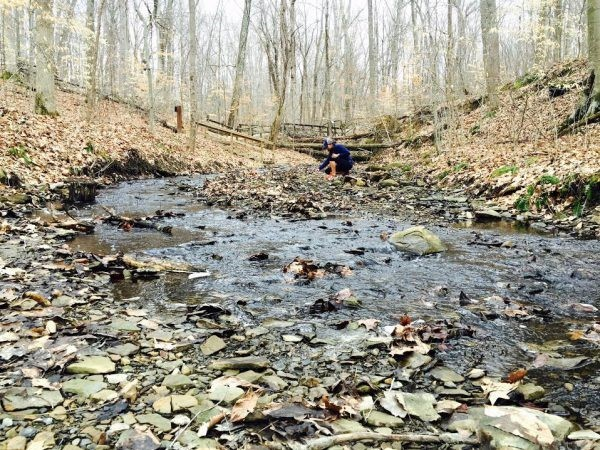 Off-Trail Adventuring at Columbus' Metro Parks