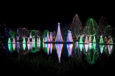 Take a Romantic Stroll Through the Columbus Zoo's Wildlights