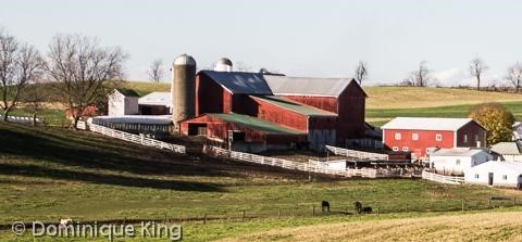 Exploring Holmes County Amish Country