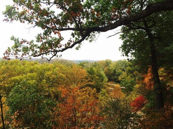 Top Five Ohio Fall Hikes