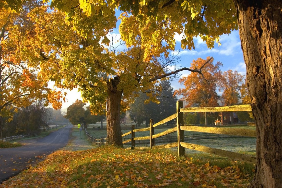 Best Getaways in Ohio for Fall