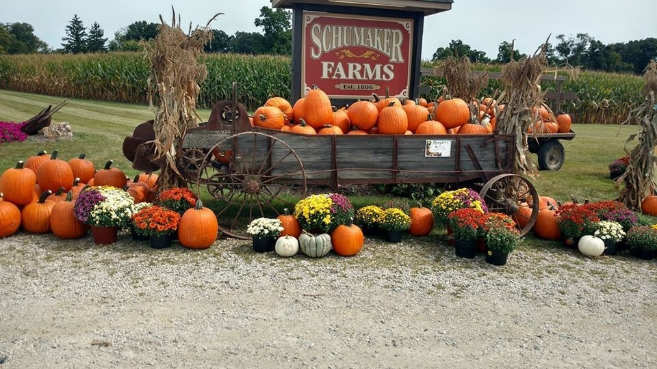 Schumaker Farms