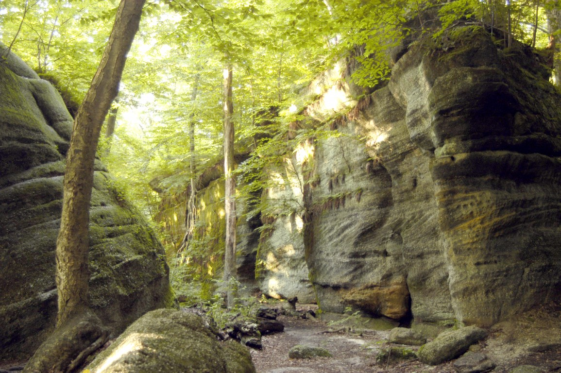 Nelson-Kennedy Ledges State Park