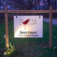 Buccia Vineyard Winery and Bed & Breakfast