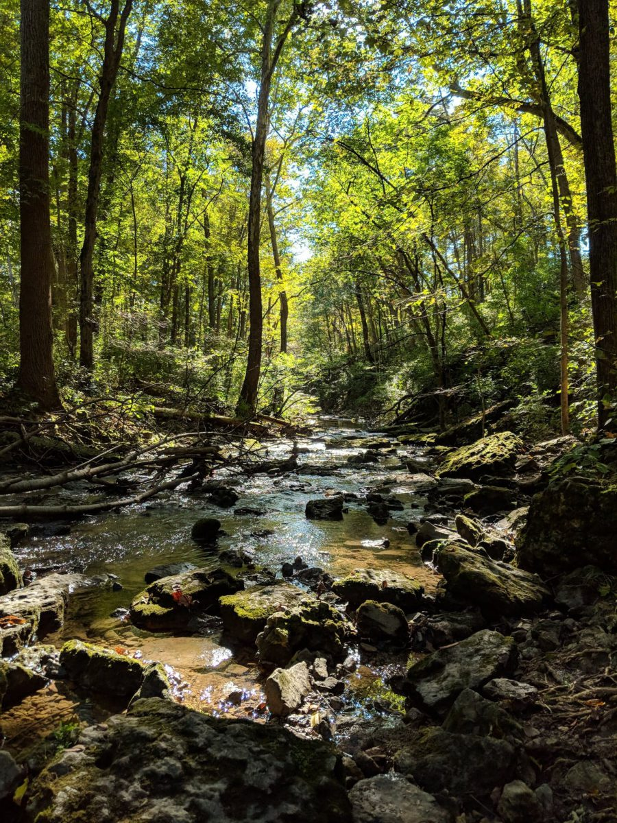 Traveling Ohio's Nature Preserves