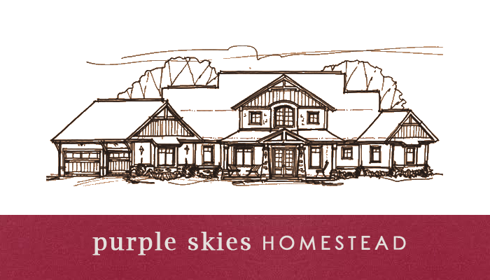Purple Skies Homestead
