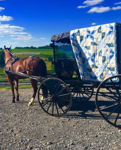 Ohio's Amish Country – Amish Heritage Tours