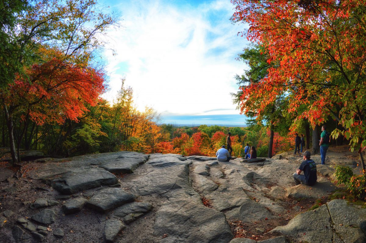 The Most Scenic Route: Experience Ohio's Best Fall Foliage
