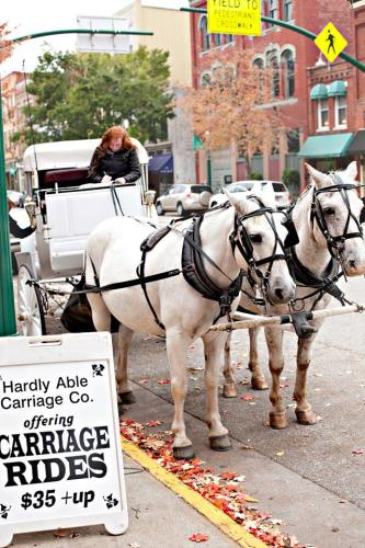 Hardly Able Carriage Co.