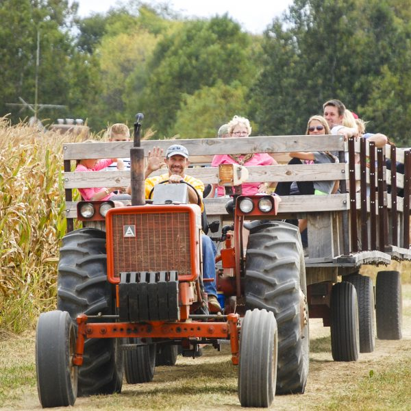 Celebrate Fall's Harvest in Union County
