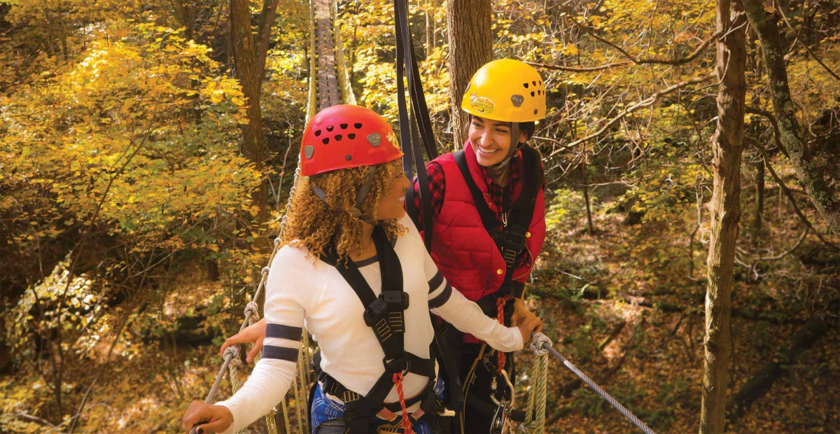 Tree Frog Canopy Tours in Glenmont