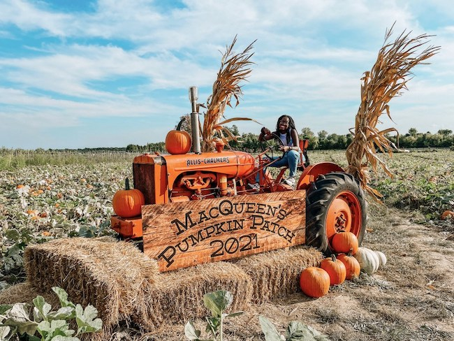 Best Pumpkin Patches In Ohio Ohio Find It Here